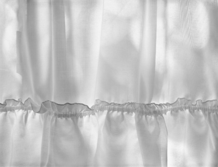 Curtain, Carmel Valley, California by Anne Larsen