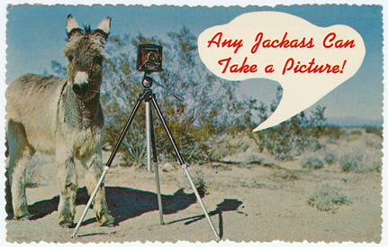 Any Jackass Can Take a Picture Post Card