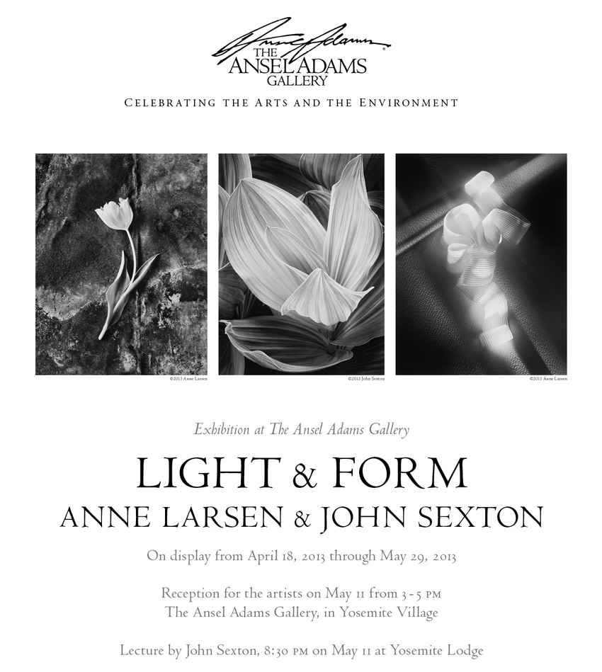Larsen Sexton AA Gallery Show