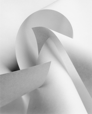 Paper Form 1 by Anne Larsen