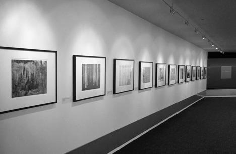 John Sexton SFO Museum Exhibition